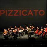 VII Фестиваль камерной музыки PIZZICATO