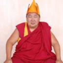 Did Khambo Lama Tsiren Dondukbaev