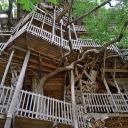 Крупнейший в мире дом на дереве построен в Америке. Он имеет площадь 930 квадратных метров и опирается не на одно, а сразу на шесть деревьев. На возведение объекта ушло 258 тысяч гвоздей. Строительство велось 14 лет — такой вот лесной долгострой. Зато рез