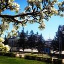 Весна в Улан-Удэ