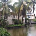 В пруду при отеле капли дождя